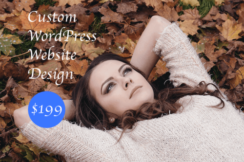WordPress design service